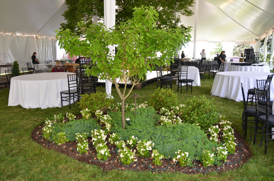 Special Occasion Landscaping